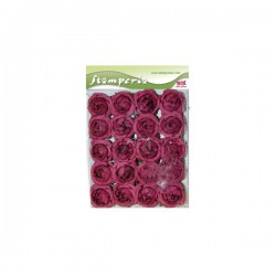 minis roses
