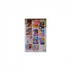 Hobby book spécial savon n°31