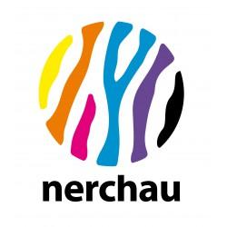 Vernis effet craquelé NERCHAU
