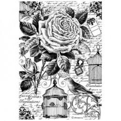 Papier de riz la cage aux oiseaux